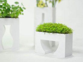 Empty vase series
